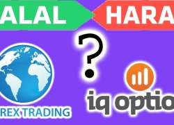 IQ option Forex Trading Halal ya Haram Complete  Information urdu/hindi only on abdulrauf tipsl