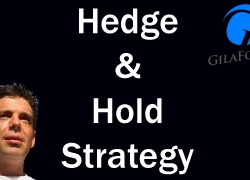 Hedge and Hold Forex Trading Strategy