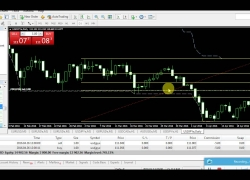 Hedge and Hold Best Forex Trading Strategy