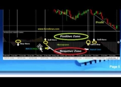 Forex Strategies – How to Use MACD Indicator in Forex Trading by Srinivas – Best MACD Strategy