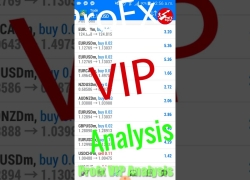 Profx VIP Analysis Forex Trading Performance