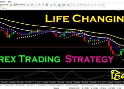 Life Changing Forex Trading Strategy | Day Trading for Beginners in Hindi/Urdu