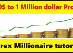 100$ to 1 Million$ How this is possible in Forex? Tani beginners tutorial in Urdu and Hindi