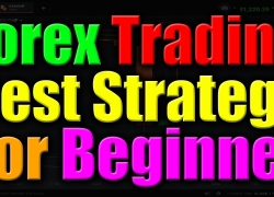 Best Point To Trade In Forex – forex trading for beginners – iq option strategy
