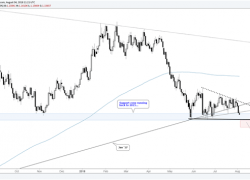 Will the Euro Cooperate and Break 11500?