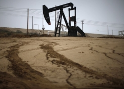 UPDATE 6-Oil falls after record U.S. shale output forecast By Reuters
