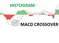 How to Enter Trades using a MACD Crossover